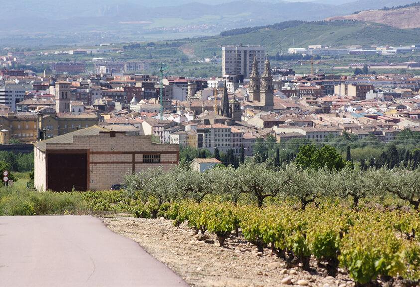 Logroño - Camino Francés