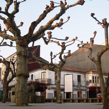Arzúa - Camino Francés