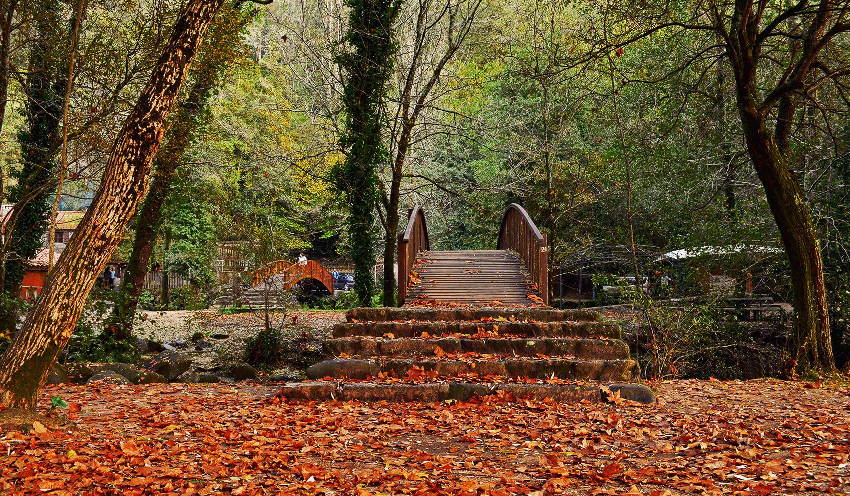 río barosa puente en otoño