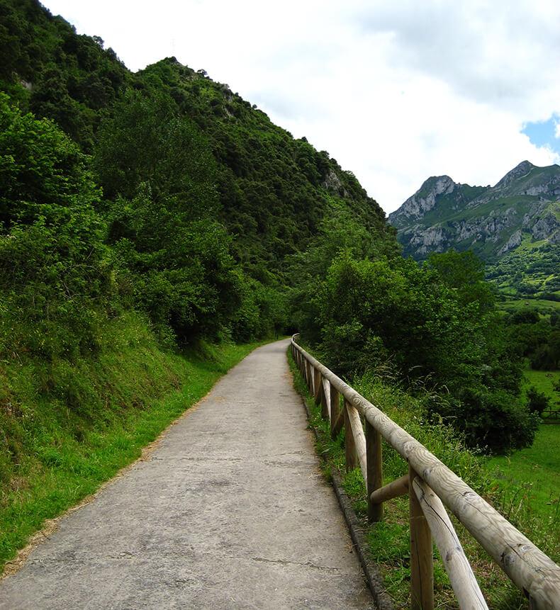 Senda del Oso vía verde Asturias