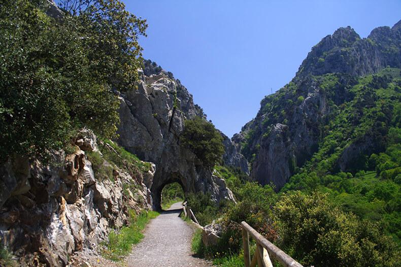 Senda del Oso en Proaza (Asturias)
