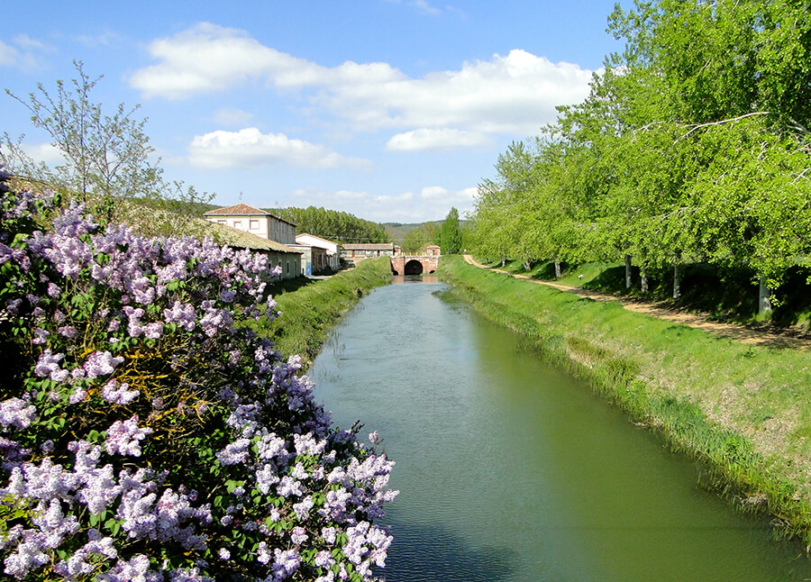 Canal de Castilla en Alar del Rey