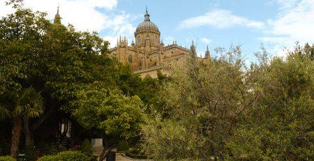 Hiuerto de Calixto y Melibea en Salamanca
