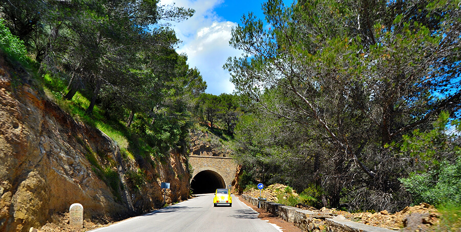 Parque Natural Montes de Málaga rutas