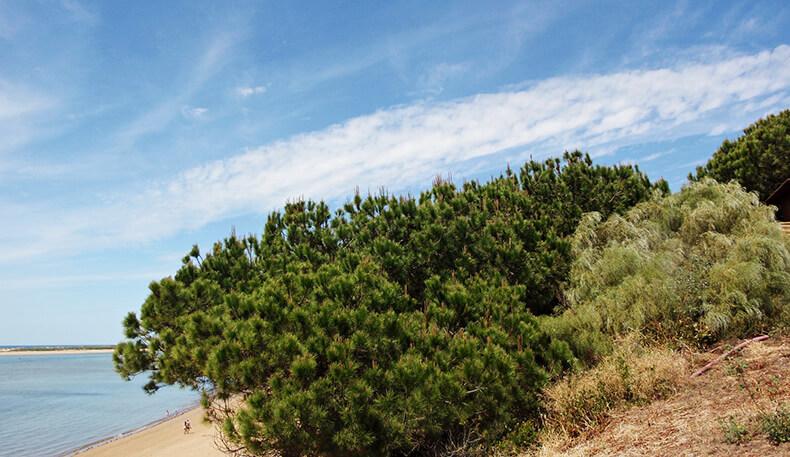 playa de El Portil reserva natural