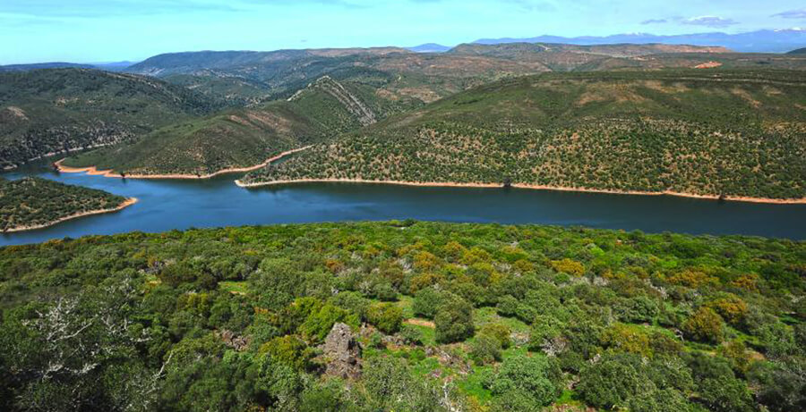 Parque Nacional de Monfragüe en Cáceres