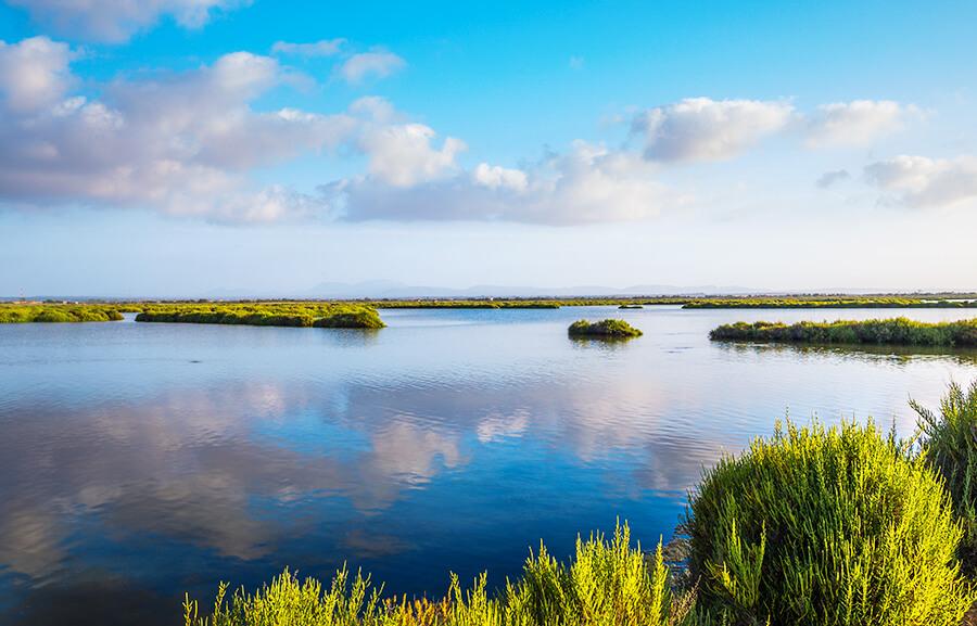parque natural de Ses Salines Ibiza Formentera