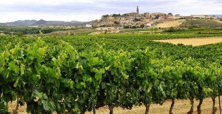 Briones La Rioja qué ver